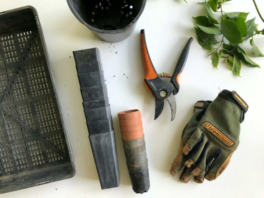 Gardening tools laid out on a table